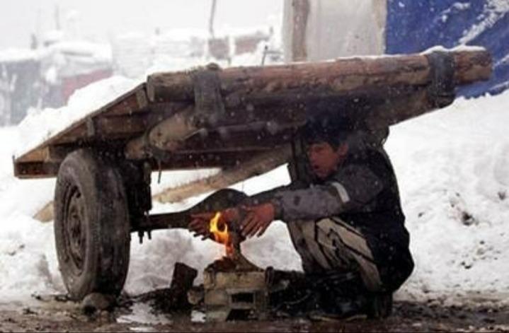 زمستان است و در ورای بادهای سرد